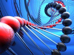 geneticheskaja-jekspertiza-dnk-5-1