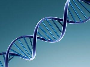 Генетическое тестирование Территория сдт Гремячевский Чебоксары лечебные учреждения по лечение акне в городе уфа